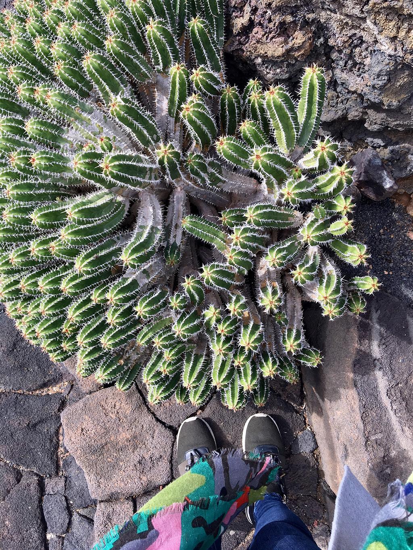 Helloitsmeblog-Lanzarote-13