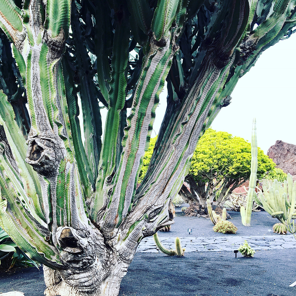 Helloitsmeblog-Lanzarote-15