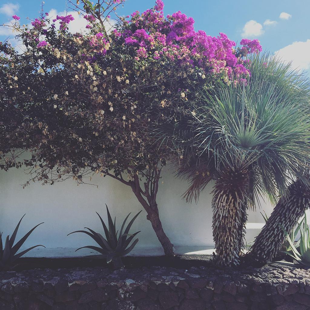 Helloitsmeblog-Lanzarote-34